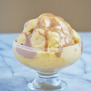 Vegan Pumpkin Spice Ice Cream (Vegan & Gluten Free)